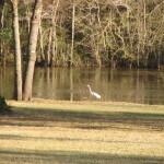 River's Edge RV Campground - Lake
